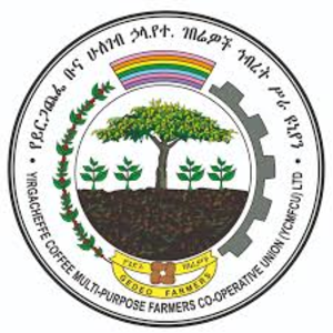 Yirgacheffe Coffee Farmers Cooperative Union