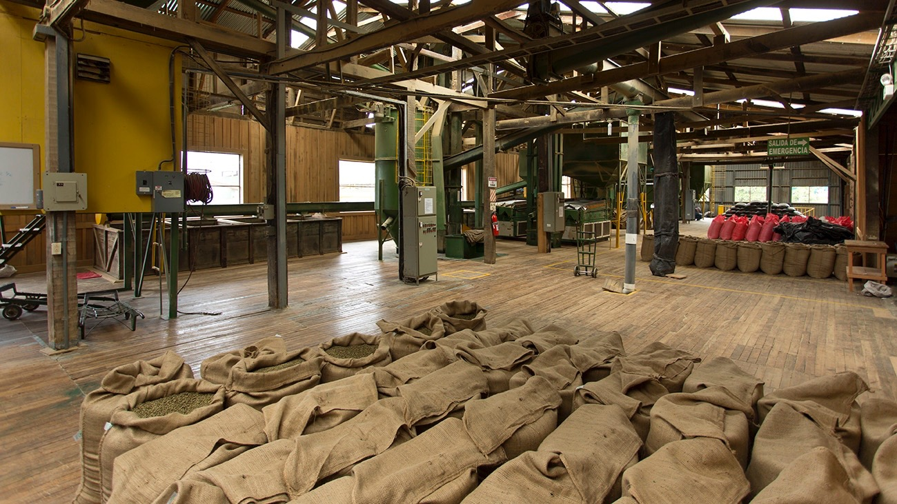 Our dry mill, where this micro-lot will be prepared