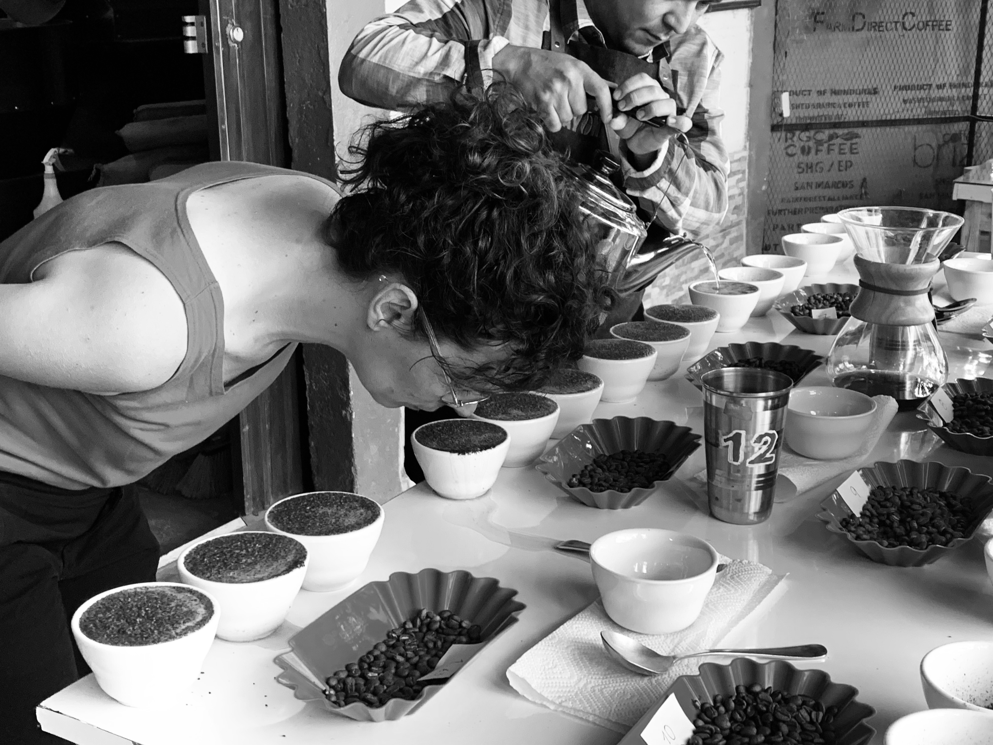 Q-Grader Katrien Pauwels from Belgium, cupping our coffees