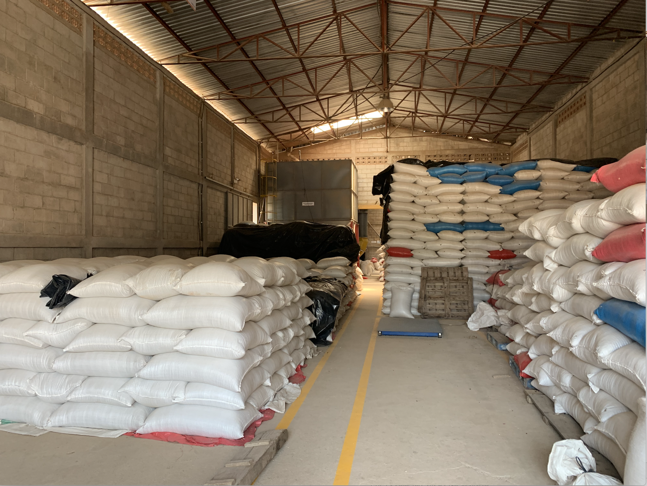 Storing some coffees, ready for export preparation