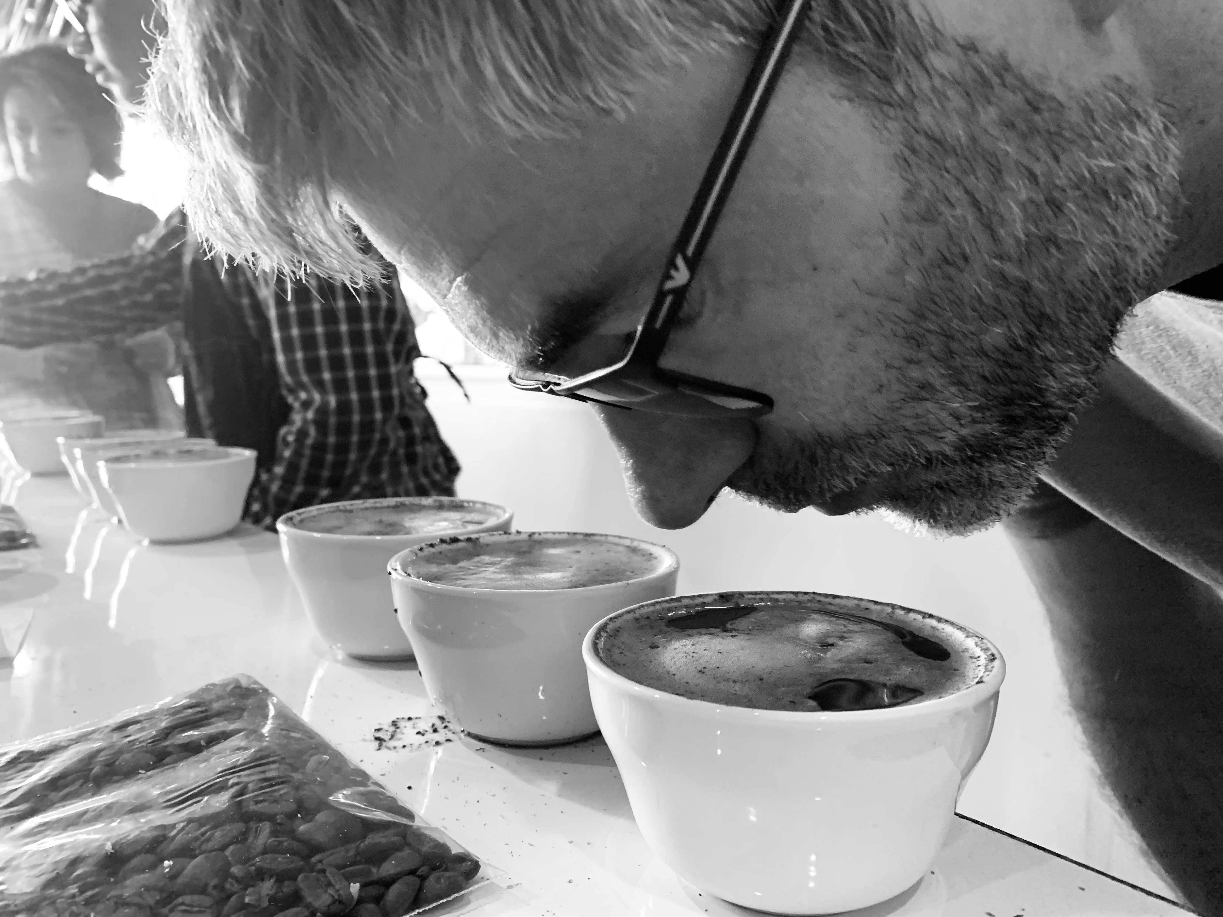 Sebastian, our international relations manager, cupping some coffees